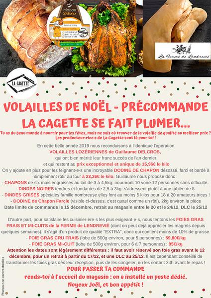 precommandedevolaillesdenoel_précommandes-fêtes-2019mail.jpg